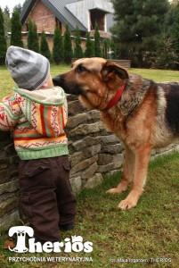 Dżeki w czasie rekonwalescencji zaprzyjaźnia się z Błażejem