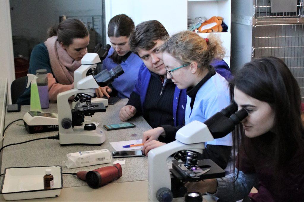 studenci krakowskiej weterynarii