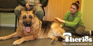 Tina, pacjentka leczona RGA