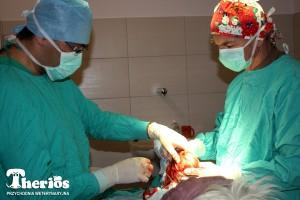 Dr Dariusz Niedzielski i dr Jacek Ingarden w czasie operacji.