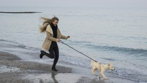 tlenoterapia dla psów i kotów